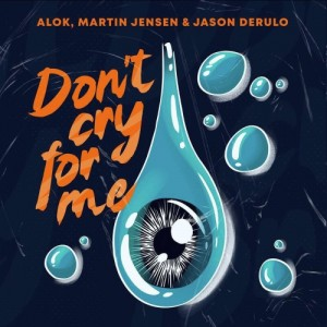 Alok - Don't Cry For Me